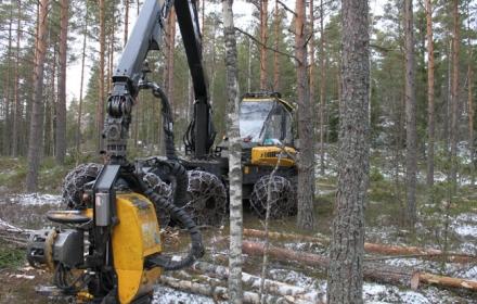Metsä Wood suunnittelee 52 miljoonaan euron investointia Punkaharjulle