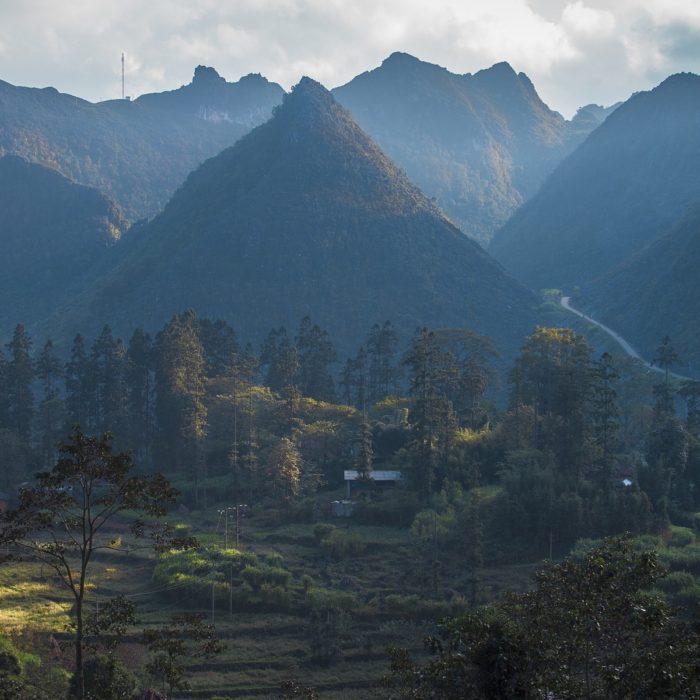 Vietnamin ensimmäinen PEFC-metsäsertifikaatti osuuskunta-allianssille