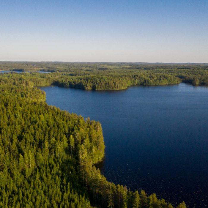 Metsä Board arvostetuille CDP:n Climate A ja Water A -listoille