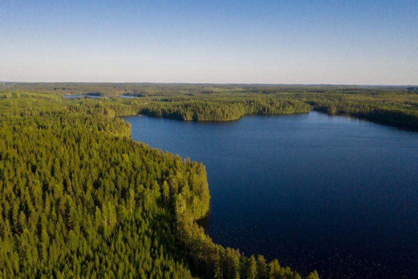 Kuvassa kesäinen metsä- ja järvimaisema