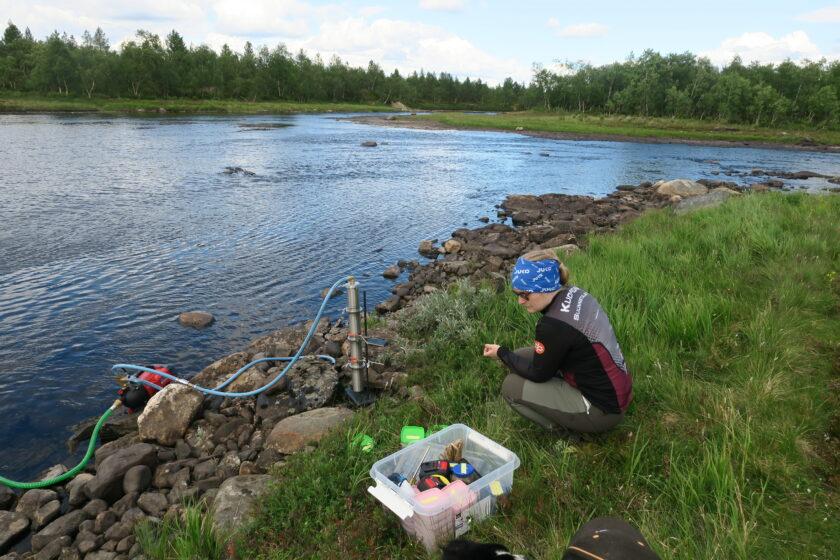 Kuvassa etualalla tutkija ottamassa näytteitä Silisjoen suistolla Näätämöllä.